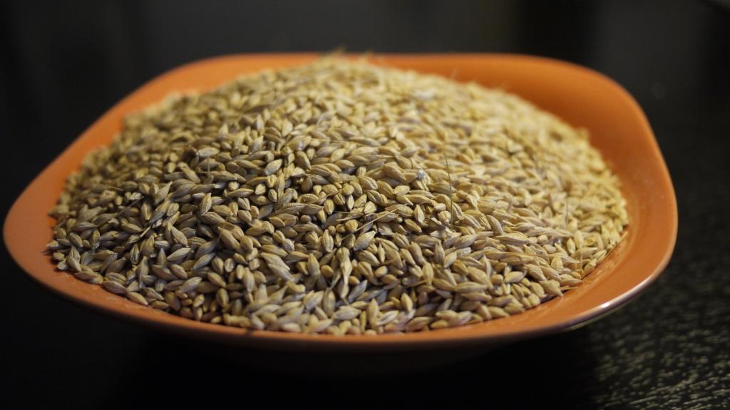 saquito térmico de semillas
